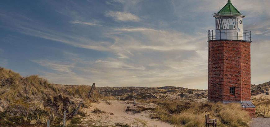Was kann man im UNESCO-Weltnaturerbe vor Sylt erleben?